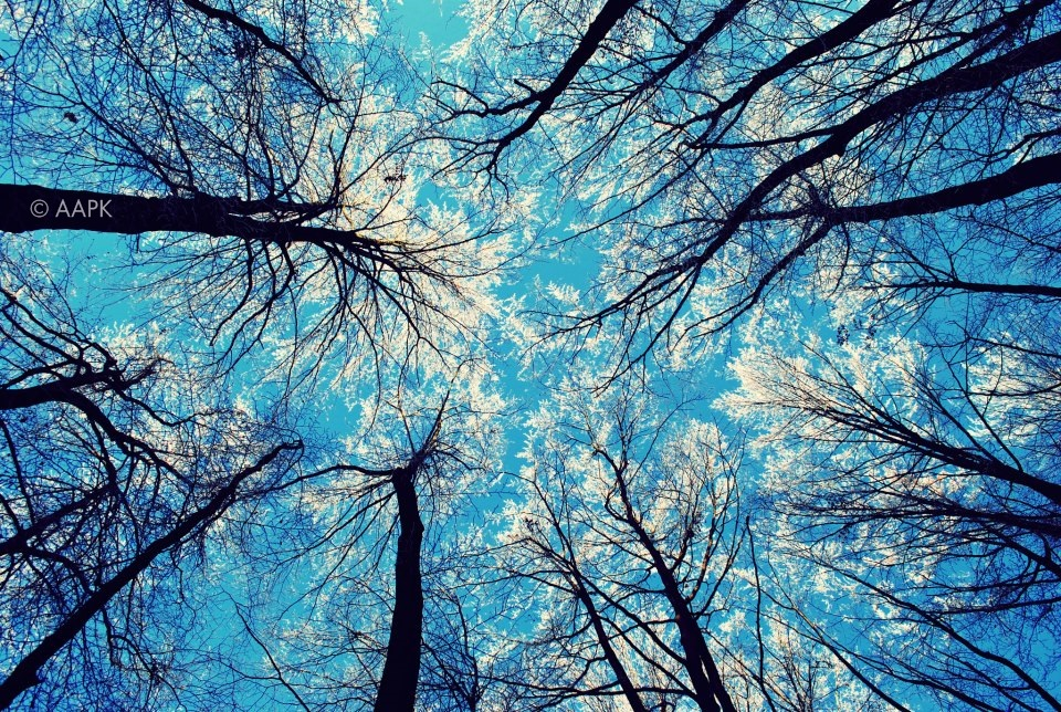 White Sky by KeiPaA