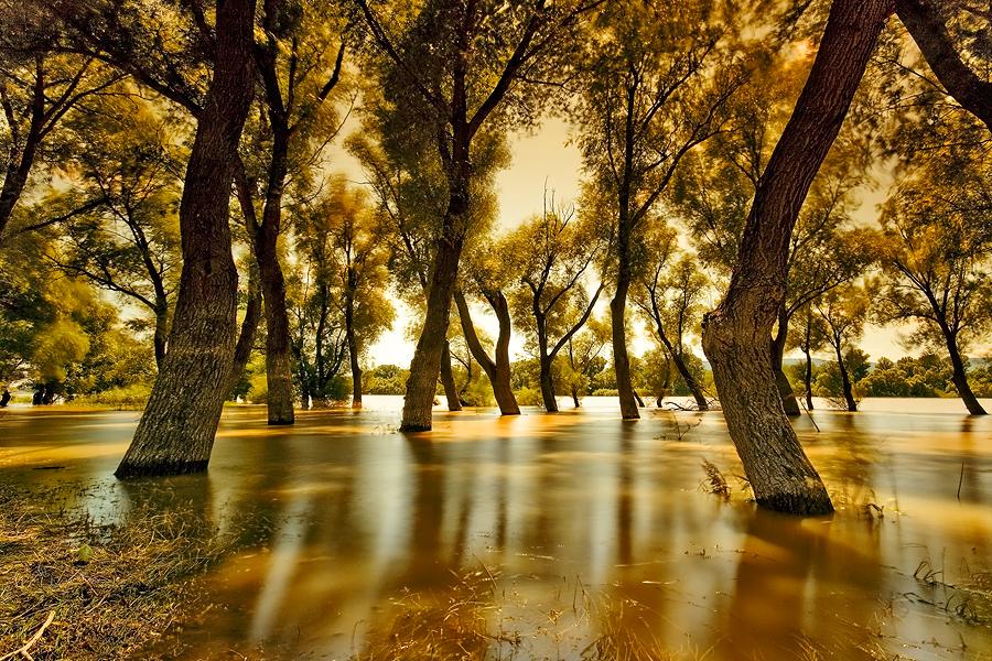 autumn flood by arbebuk