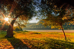 autumn feeling by arbebuk