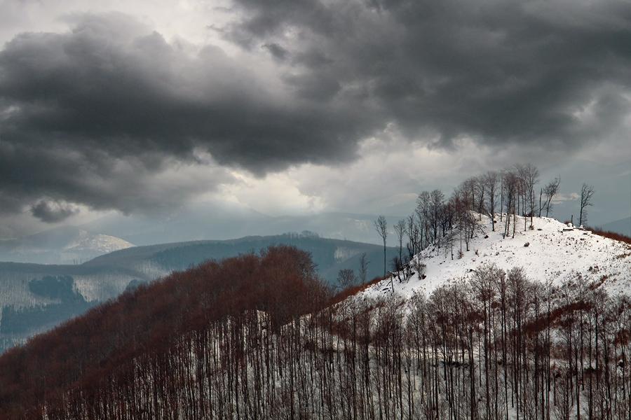 winter tale by arbebuk