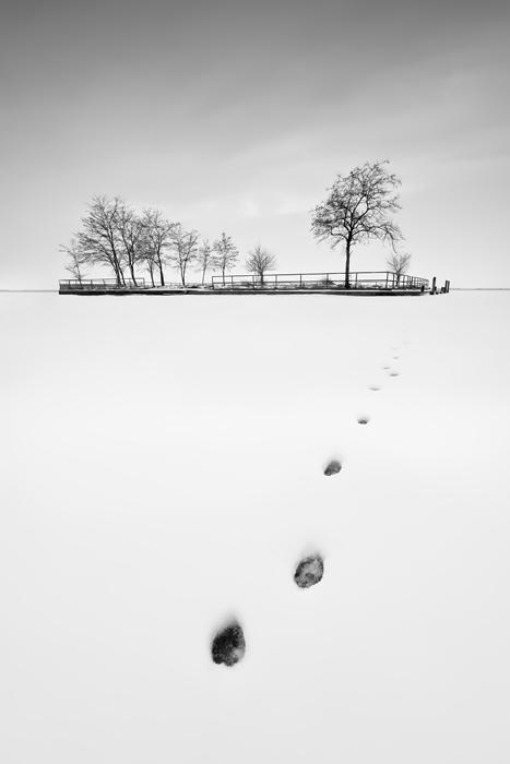 track by arbebuk