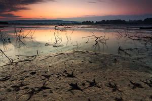 dead land by arbebuk
