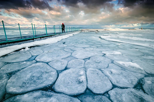 frozen cells
