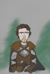 The King in the North by TheWittenburger