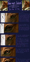 Horse Eye Tutorial by oOo-Alouette-oOo