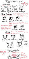 Tips on Drawing Cats part 1