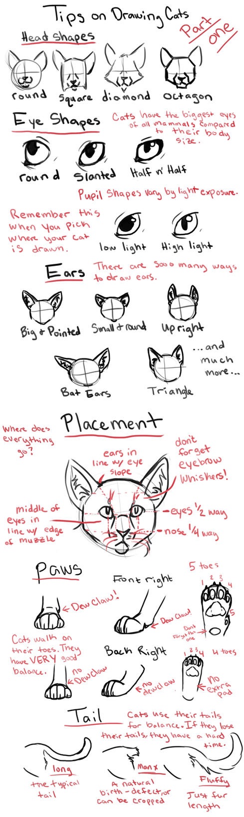 Tips on Drawing Cats part 1 by louli9559