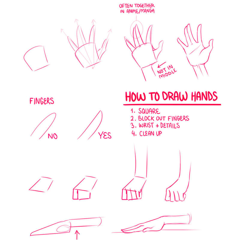 How To Draw Hands by Lily-Draws on DeviantArt