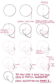 Face profile tutorial part 1