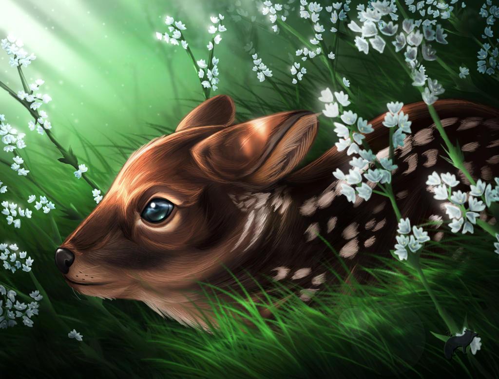 Miniature Deer Baby