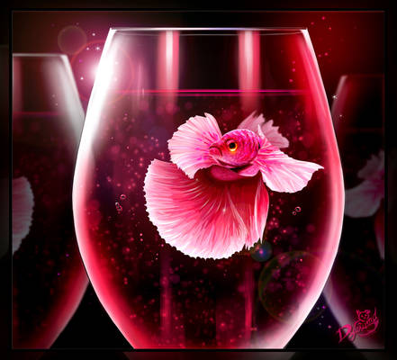 Pink Betta