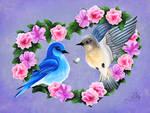Mountain Bluebirds by Dyewind