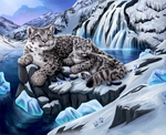 Snow Leopards by Dyewind