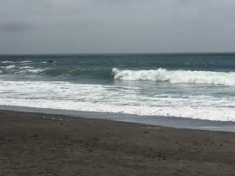 Muir Waves