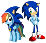 Sonic and Rainbow Dash: Each Other's Fan