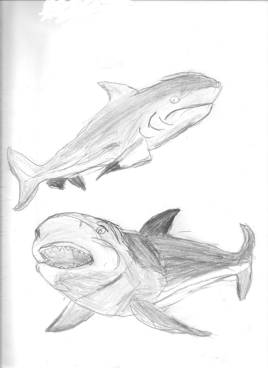 Bull shark painting