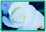 -flower stamp e1- by Gold-Angel