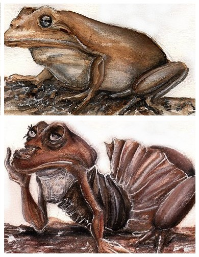 Frog transformation by nerima 95 on deviantart for Frog transformation