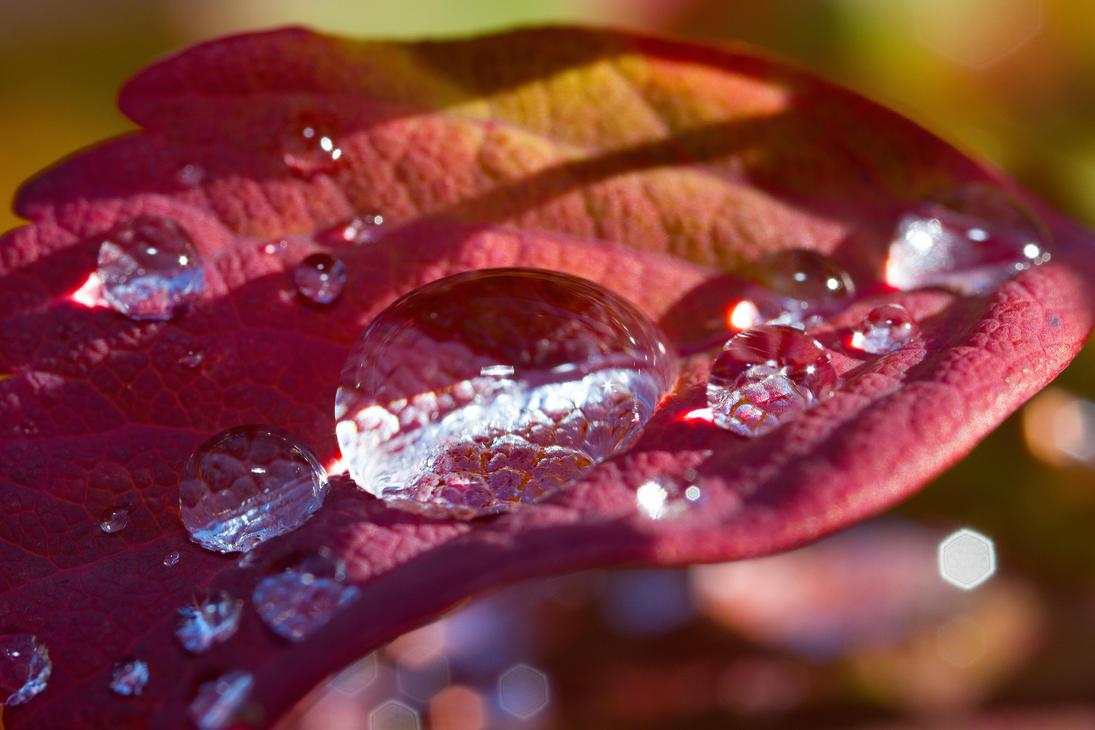 Water drop #2 by Azph