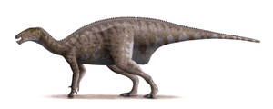 Mantellisaurus by Steveoc86