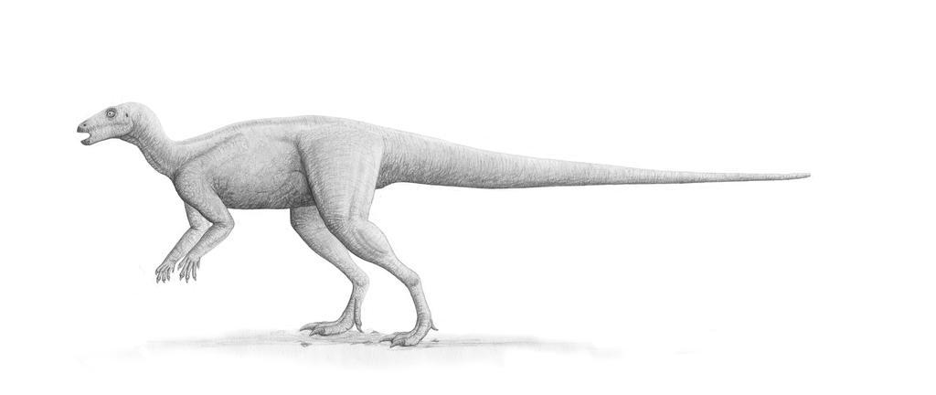 Parksosaurus Profile: July 2007 Version by Steveoc86
