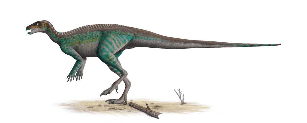 Parkosaurus Profile: 2014 Version by Steveoc86