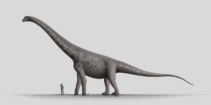 Speculative Bruhathkayosaurus by Steveoc86
