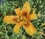 Van Gogh Tiger Lilly