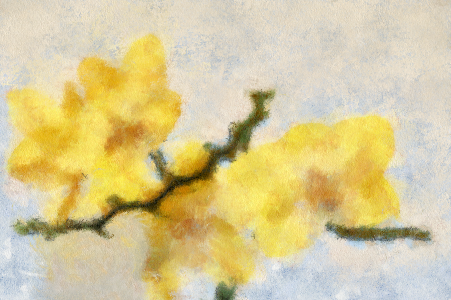 Cezanne Yellow Flowers by diverse-norm