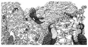Hornbills of Borneo