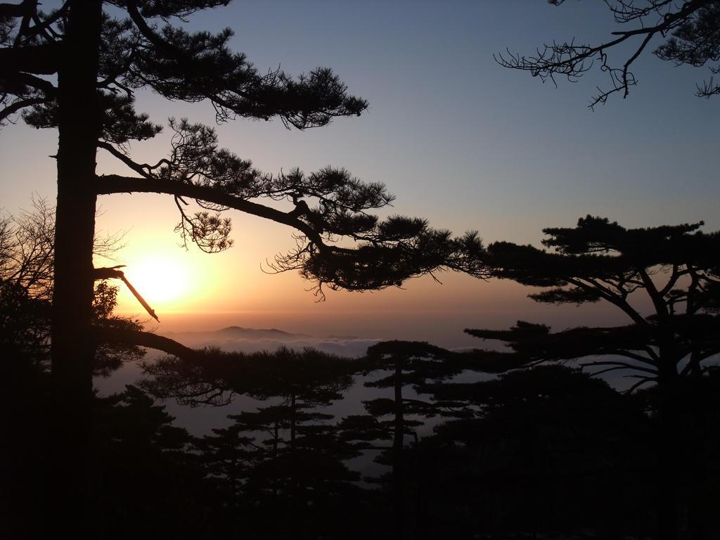 HuangShan Sunrise Through Pine by MandarinManMark