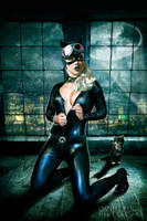 Catwoman by Daniel-Rocal