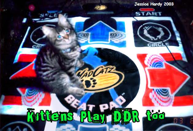 DDR Kitten by Rabid-Turtle
