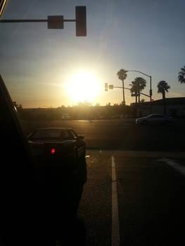Sunlit Roadside