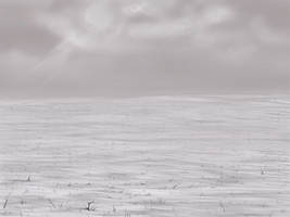 Snow Background by wingedness