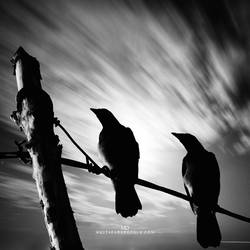 revolution of the dark by MustafaDedeogLu
