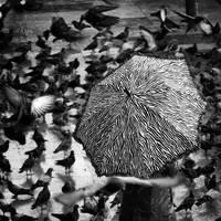 U by MustafaDedeogLu