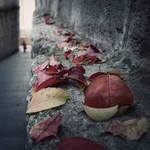 then by MustafaDedeogLu