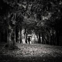 cLimates by MustafaDedeogLu