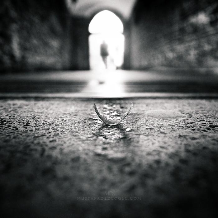 --o-- by MustafaDedeogLu