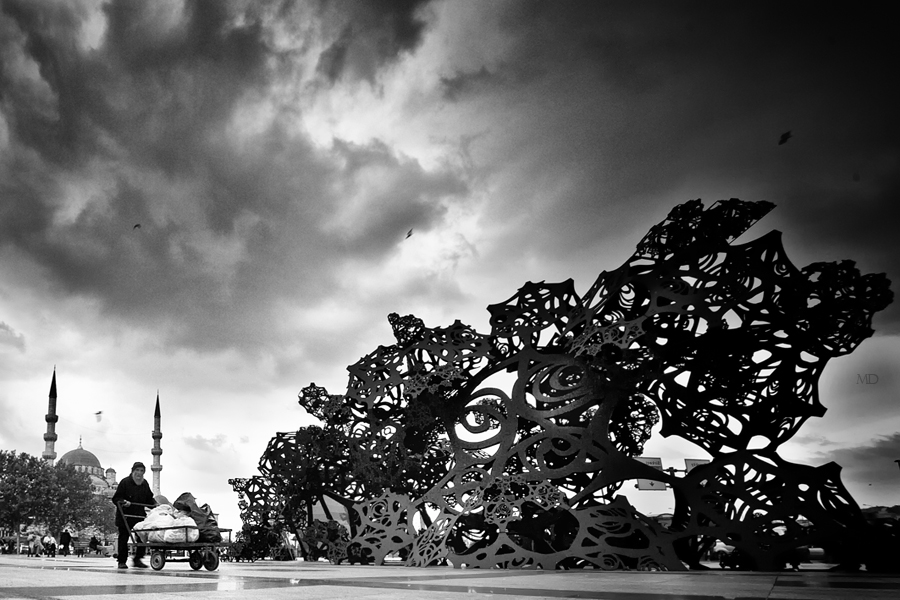 one day' by MustafaDedeogLu