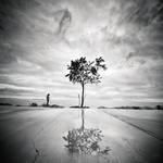 edge of Life by MustafaDedeogLu