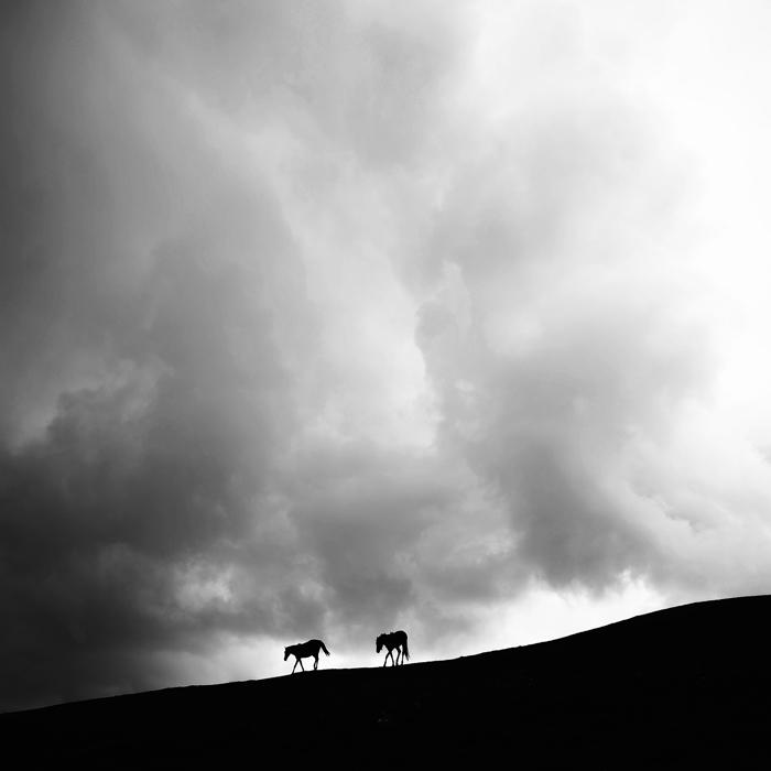 ll' by MustafaDedeogLu