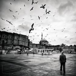 019 by MustafaDedeogLu
