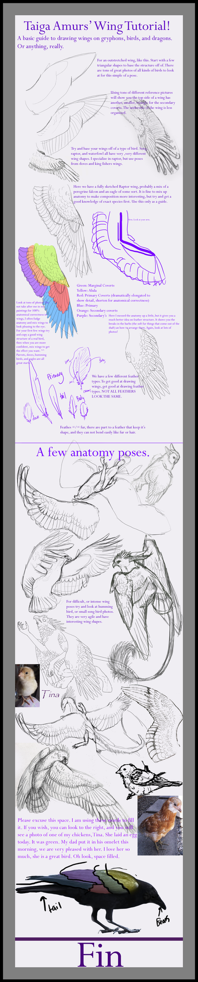Wing Tutorial by SunStateGalleries