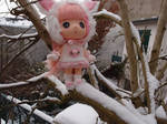 Pink in the snow by framboisie