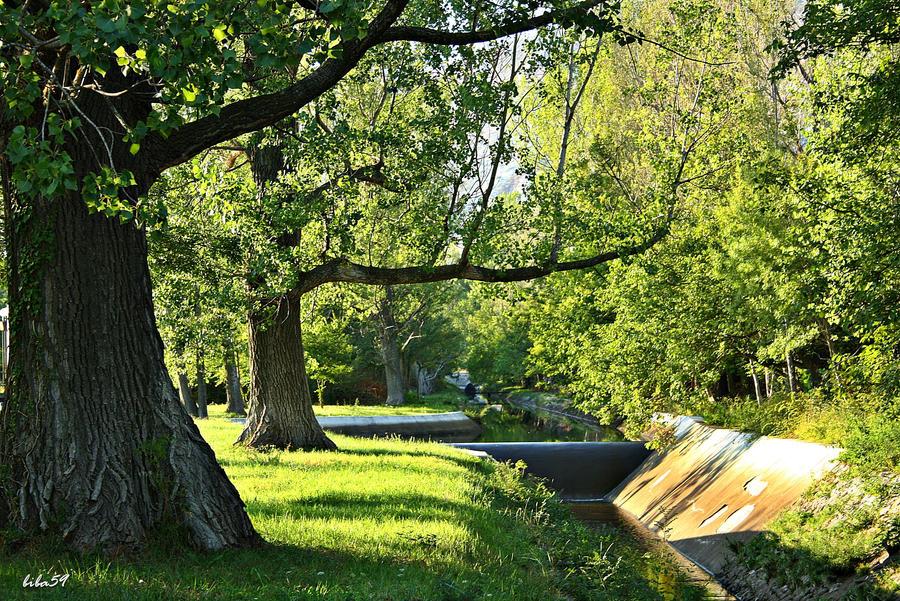 in a green environment by biba59 on deviantart