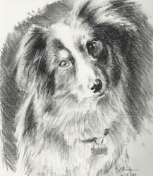 Dog by HitmanateeArt