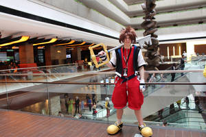 Sora Cosplay at Anime Midwest