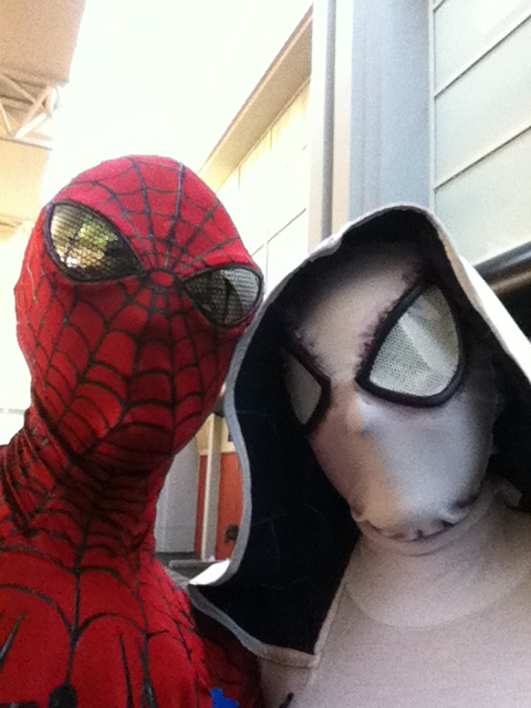 Spider-Man and Gwen Stacy? by fireemblemspider